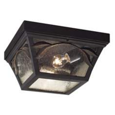 Hampton Park Indoor - Outdoor Ceiling Light