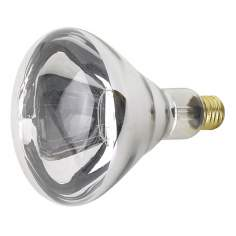 250 Watt R40 Heat Lamp Light Bulb