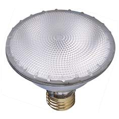 75 Watt PAR30  Flood Light Bulb