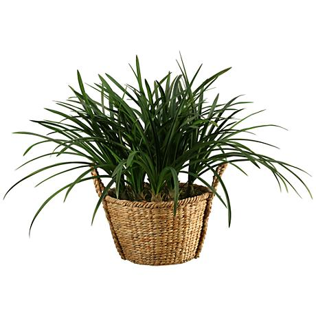 "Green Areca Grass 36"" Wide Faux Plant"
