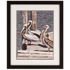 "The Gang's All Here 33"" High Framed Sea Bird Wall Art"