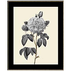 "Sterling Floral I 27 1/2"" High Framed Giclee Wall Art"