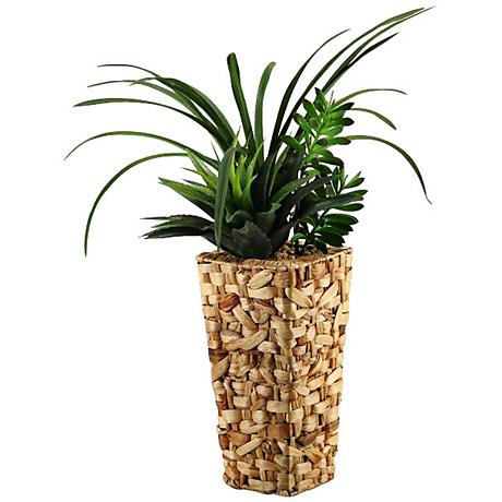 "Green Areca Grass and Succulents 33""H in Tall Square Basket"