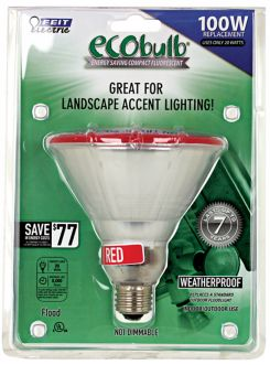 CFL Outdoor Light Bulb