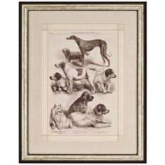 International Dog Show I Framed Wall Art