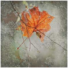 "Nature's Way 36"" Square Leaf Wall Art"