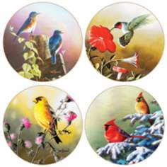 Hindostone Set of 4 Backyard Visitors Coasters