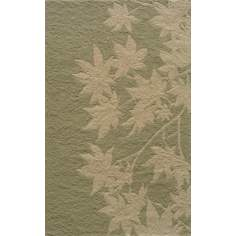 Veranda VR-17 Sage Indoor/Outdoor Area Rug