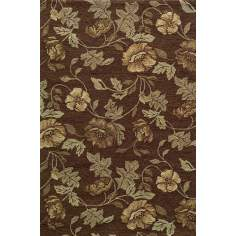 Veranda VR-24 Brown Indoor/Outdoor Area Rug