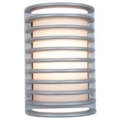 Access Poseidon Collection Satin Cage Outdoor Sconce