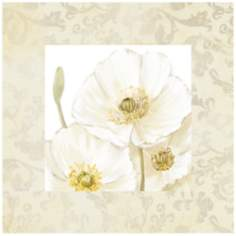 "White Poppies I 26"" Square Canvas Floral Wall Art Print"