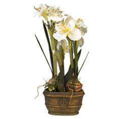 White Triple Amaryllis Flower Arrangement