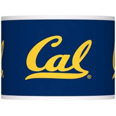 University of California Berkeley Shade 13.5x13.5x10 (Spider)