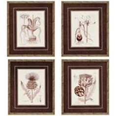 "Set of 4 Sepia Tone Flora 19"" High Wall Art"