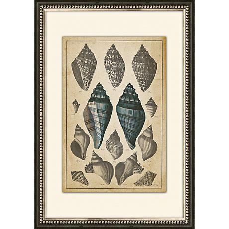 "Sepia Seashells II 26 1/2"" High Giclee Wall Art"