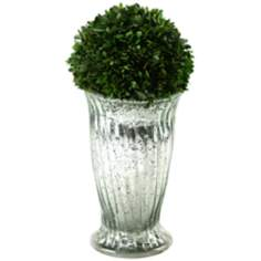 Preserved Boxwood Ball in Mercury Glass Vase