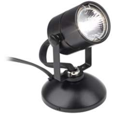 Lil Wonder Black Mini Spotlight