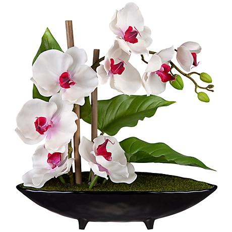 Purple and White Orchids in a Black Ceramic Pot