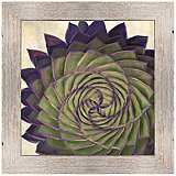 "Plum Aloe II 25 1/2"" Square Framed Giclee Wall Art"