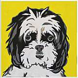 "Cute Pet IX 16"" Square Framed Giclee Wall Art"