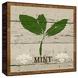 "Earthy Brown Green Mint 12"" Square Rustic Wood Wall Art"