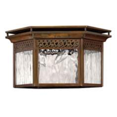 Hinkley Westwinds Collection Indoor - Outdoor Ceiling Light
