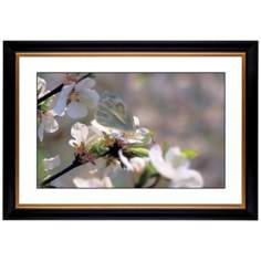 "Cherry Blossoms Giclee 41 3/8"" Wide Wall Art"