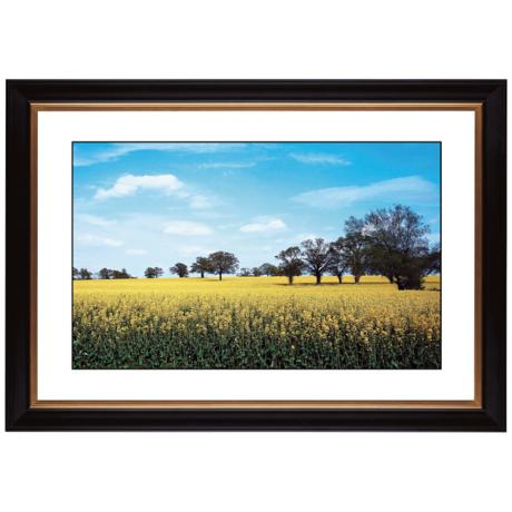 "Summer Field Giclee 41 3/8"" Wide Wall Art"