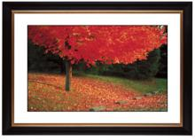 http://www.lampsplus.com/Products/s_autumn/page_2/57215-80384/