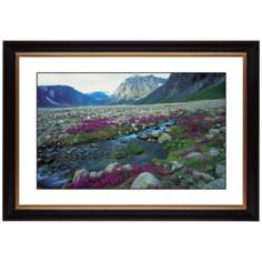 "Mountain Running Spring Giclee 41 3/8"" Wide Wall Art"