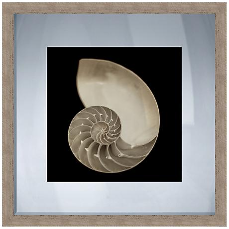 "Nautilus Black and White Shell 20"" Square Giclee Wall Art"