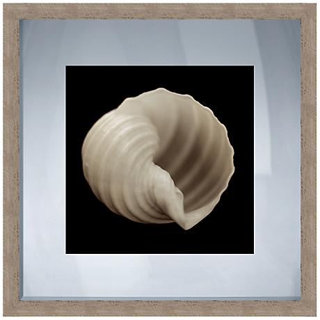 "Black and White Shell II 20"" Square Giclee Wall Art"