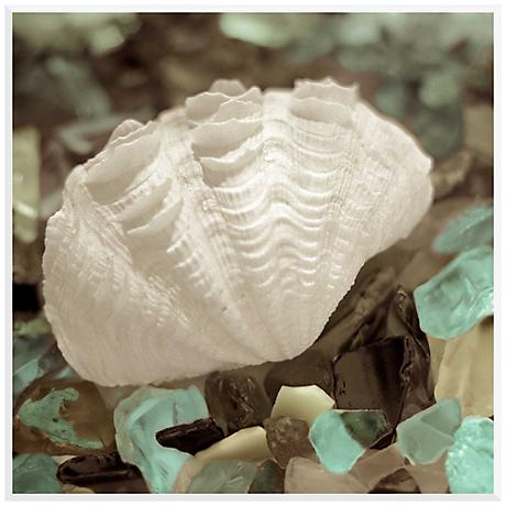 "Sea Shell II 17 3/4"" Square Giclee Laminate Box Wall Art"