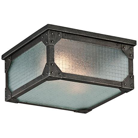 "Hoboken 14"" Wide Indoor-Outdoor Ceiling Light"