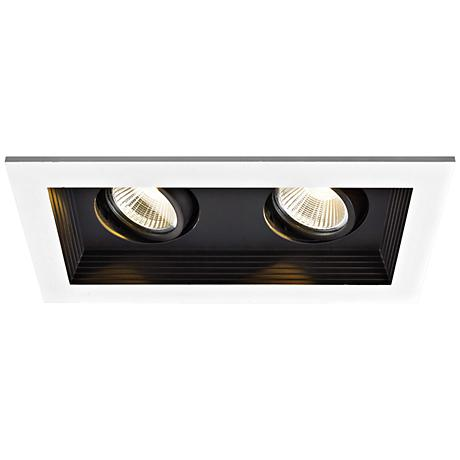 WAC Double Spot Light 22W LED Remodel Complete Recessed Kit
