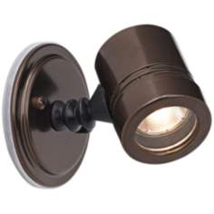 Myra Collection Bronze Outdoor Halogen Spotlight