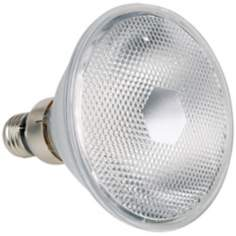 65 Watt PAR38 Flood Halogen Light Bulb