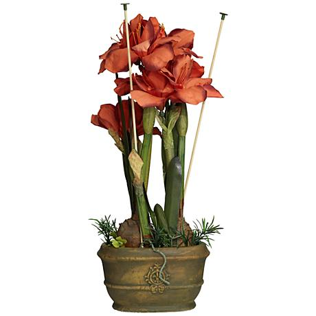 Red Triple Amaryllis Flower Arrangement