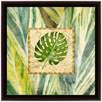 "Tropical Treasure II 18"" Square Framed Wall Art (6P105) 6P105"