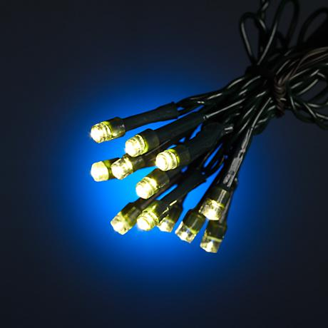 String Lights Lamps Plus : Warm White 66 Battery Operated Timer LED String Lights