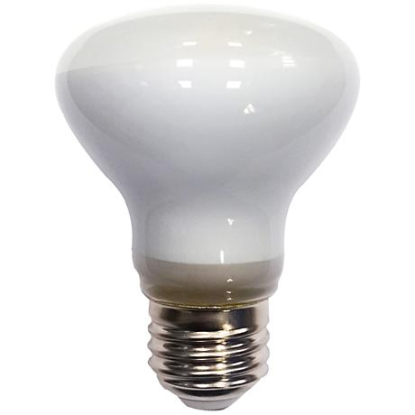 4.5 Watt LED BR20 Frosted Filament Light Bulb
