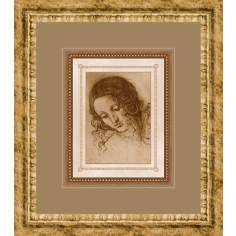 "Classical Sketches B 17"" High Wall Art"