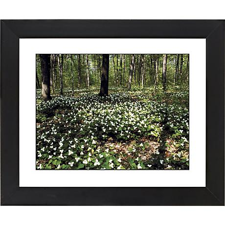 "Forest Flowers Black Frame Giclee 23 1/4"" Wide Wall Art"