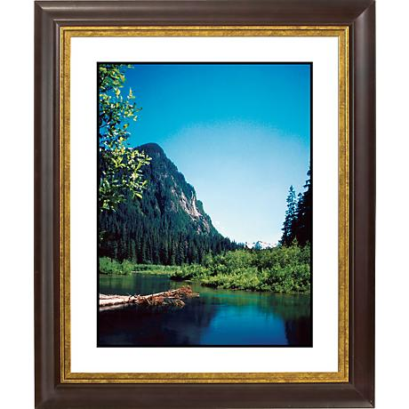 "Rocky Mountain View Gold Bronze Frame 20"" High Wall Art"
