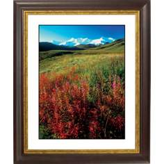 Snowy Mount W/Wildflowers Gold Bronze Frame Giclee Wall Art