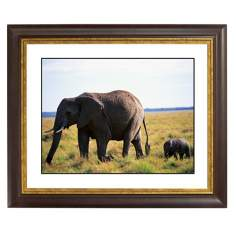 African Elephant And Calf Gold Bronze Frame Giclee Wall Art