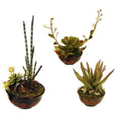 Desert Faux Arrangements Set of Three in Red Pots