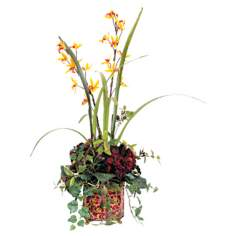 Hydra and Kangaroo Paw Floral Arrangement