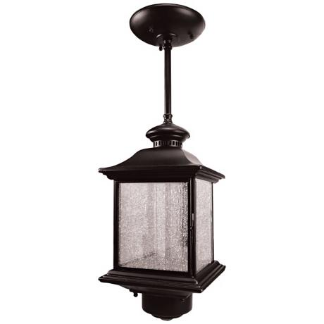 "Black Finish 14"" High Hanging Outdoor Light"