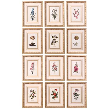 Uttermost Set of Twelve Flower of the Month Framed Wall Art